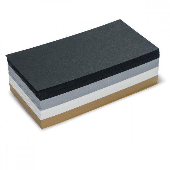 Carduri Moderare Training Neuland Pin-It, Dreptunghiulare, 9,5 x 20,5 cm, 500 buc, set culori mate