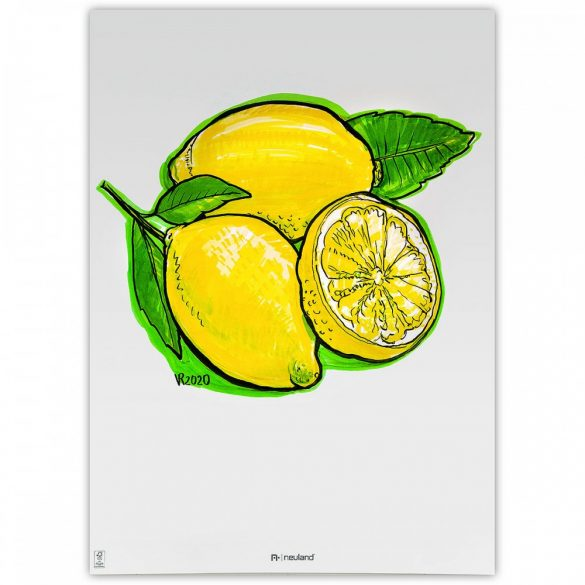 Set Markere Reincarcabile Neuland BigOne®, vârf teșit 6-12 mm: 5/set no. 11 Lemon Tree