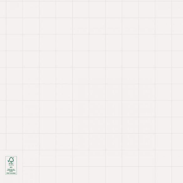 Hartie Flipchart, liniatură matematică, 100 coli/top, alb lucios