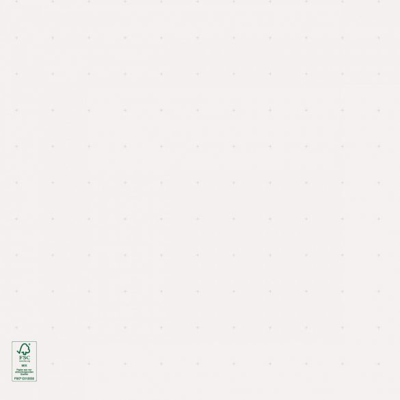 Hârtie Flipchart, liniatură punctată, 100 coli/top
