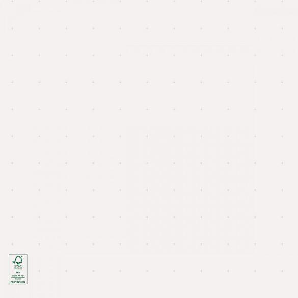 Hartie Flipchart, liniatură punctată, 200 coli/top